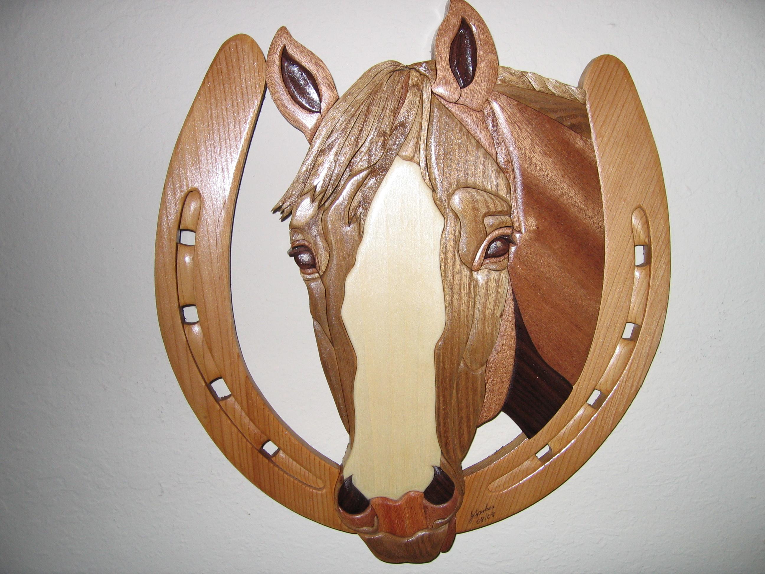 Horse Shoe Sizes